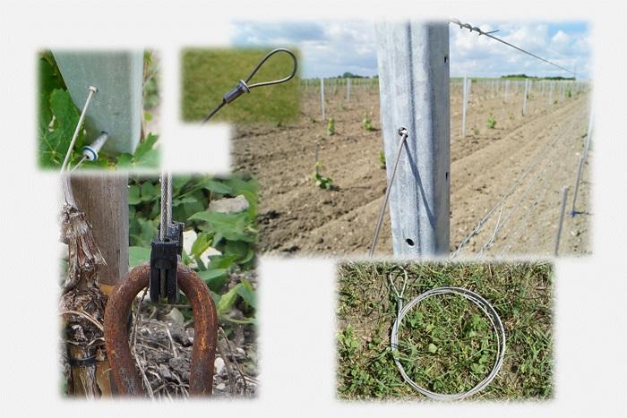 Comment choisir les câbles d'amarre en inox pour l'arboriculture et la viticulture