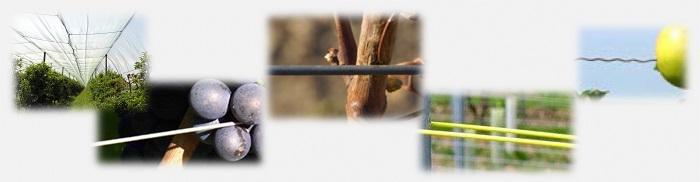 Comment choisir les fils en acier pour l'arboriculture et la viticulture - crapal