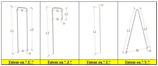 TUTCRANTE2