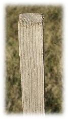 tuteur bois acacia scie